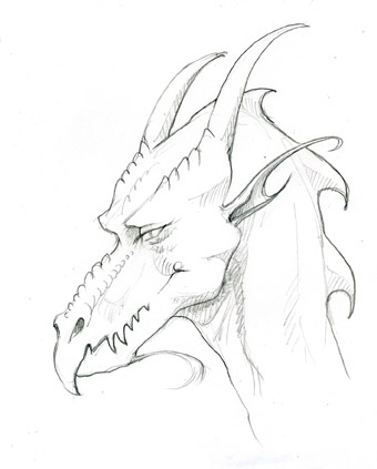 Dragon Sketch by Jennifer Broschinsky.